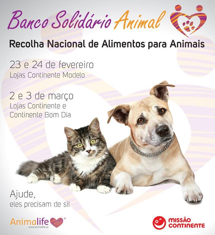 Banco solid rio animal 1 728 2500